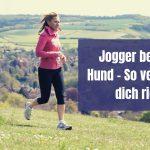 Jogger begegnet Hund – So verhältst du dich richtig